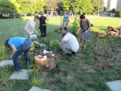 Un bel exemple de démarche participative à Morges: partager des jardins urbains!/innovation